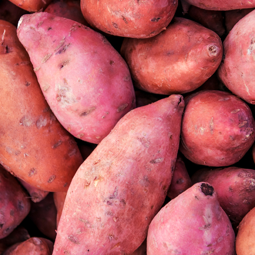 Organic Purple Sweet Potatoes